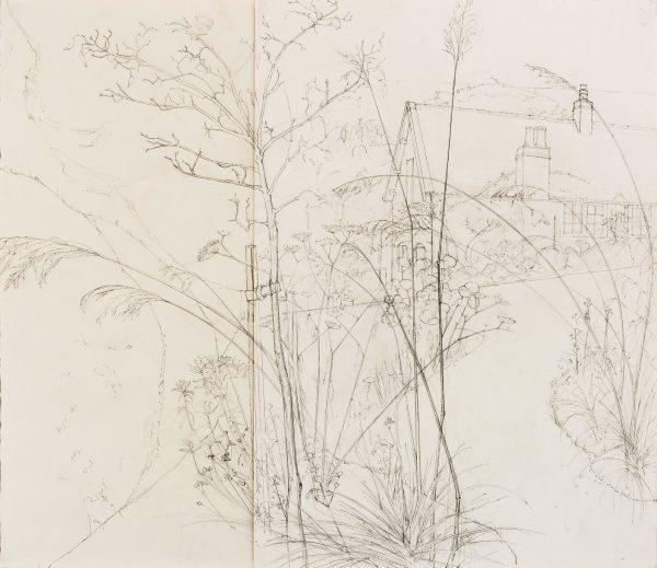 Garden, study, Graphite, 58 x 69 cm
